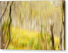 Abstract Forest Scenery  Acrylic Print by Gry Thunes