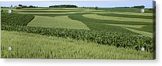 Agriculture - Contour Strips Of Mid Acrylic Print by Timothy Hearsum