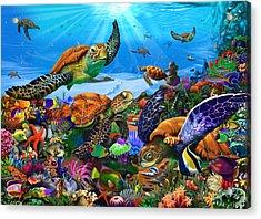 Amazing Undersea Turtles Acrylic Print by Gerald Newton