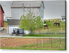 An Amish Farm Acrylic Print by Dyle   Warren