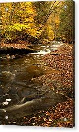 Autumn And Creek Acrylic Print by Amanda Kiplinger