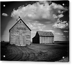 Barns In Illinois Acrylic Print by Mountain Dreams