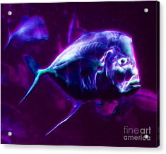 Big Fish Small Fish - Electric Acrylic Print by Wingsdomain Art and Photography