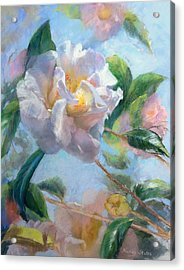 Blooming Flowers Acrylic Print by Nancy Stutes