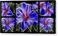 Blue Hibiscus Fractal Acrylic Print by Peter Piatt