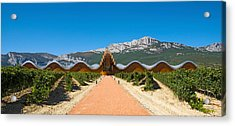 Bodegas Ysios Winery Building Acrylic Print by Panoramic Images