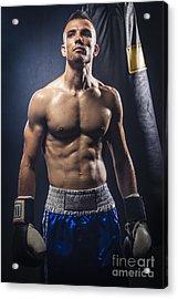 Boxer Acrylic Print by Juan  Silva