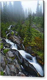Carvings Of Nature Acrylic Print by Ryan Manuel