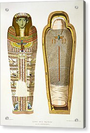 Case And Mummy In Its Cerements Acrylic Print by American School