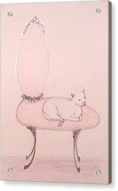 Cat On A Vanity Chair Acrylic Print by Christine Corretti