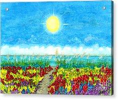 Color Path Acrylic Print by Tina Zachary