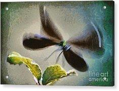 Dragonfly In Flight Acrylic Print by George Atsametakis