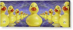 Ducks In A Row Acrylic Print by Mike McGlothlen