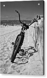 Fat Tire Acrylic Print by Peter Tellone