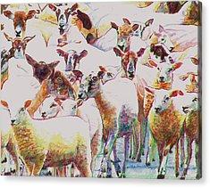 Flock Acrylic Print by Helen White