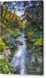 Forest Stream Acrylic Print by Ian Mitchell