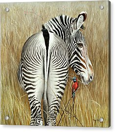 Grevy And The Bee Eaters Acrylic Print by Rob Dreyer AFC