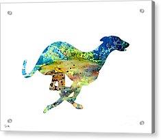 Greyhound  Acrylic Print by Luke and Slavi
