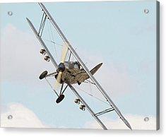 Hawker Hind - Comin' At Ya Acrylic Print by Pat Speirs