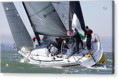 Heading Upwind Acrylic Print by Steven Lapkin