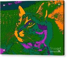 Jungle Cat Acrylic Print by Hanza Turgul