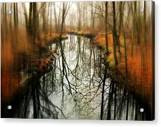 Just One Wish Acrylic Print by Diana Angstadt