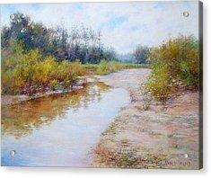 Landscape  Acrylic Print by Nancy Stutes