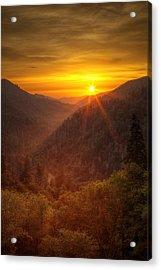 Last Rays Acrylic Print by Andrew Soundarajan