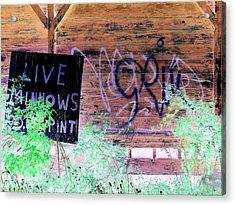Live Minnows Acrylic Print by Dietrich ralph  Katz