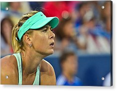 Maria Sharapova Acrylic Print by David Long
