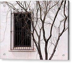 Mission Church Window Acrylic Print by Joe Kozlowski