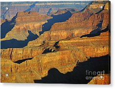 Morning Color And Shadow Play In Grand Canyon National Park Acrylic Print by Shawn O'Brien