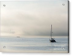 Morning Mist Acrylic Print by Mike  Dawson