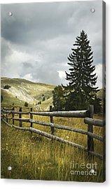 Mountain Landscape Acrylic Print by Jelena Jovanovic