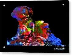 Mushroom Rock Acrylic Print by Gunter Nezhoda
