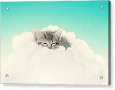 On Cloud Nine Acrylic Print by Amy Tyler