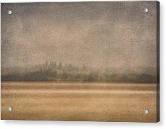Oregon Rain Acrylic Print by Carol Leigh
