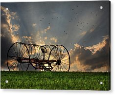 Out To Pasture Acrylic Print by Lori Deiter