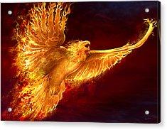 Phoenix Rising Acrylic Print by Tom Wood