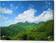 Puerto Rico, Luquillo, El Yunque Acrylic Print by Miva Stock
