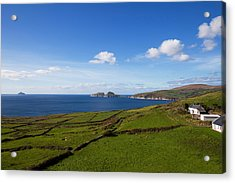 Puffin Island From The Skelligs Ring Acrylic Print by Panoramic Images