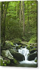 Rapids At Springtime Acrylic Print by Andrew Soundarajan