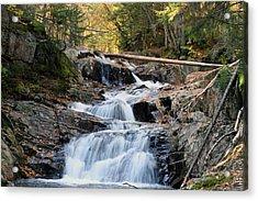 Roaring Brook Falls Acrylic Print by Brett Pelletier