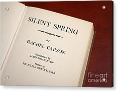 Silent Spring Acrylic Print by Victor De Schwanberg