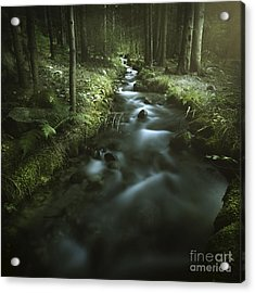 Small Stream In A Forest, Pirin Acrylic Print by Evgeny Kuklev