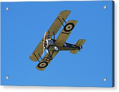 Sopwith Camel - Wwi Fighter Plane Acrylic Print by David Wall