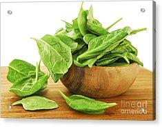 Spinach Acrylic Print by Elena Elisseeva