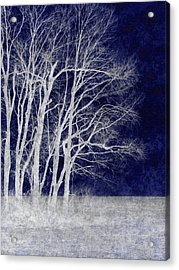 Spring Frost Acrylic Print by Luke Moore