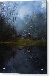Spring Mornings Acrylic Print by Ron Jones