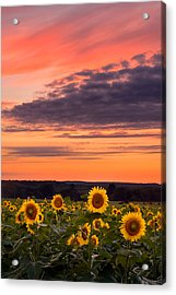 Sun Over Sun Acrylic Print by Michael Blanchette